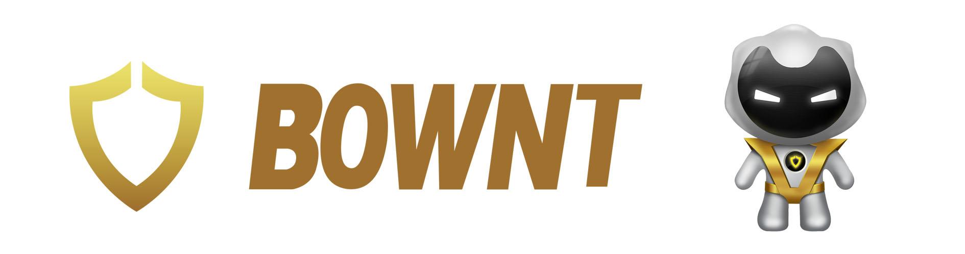 美国BOWNT过滤器技术揭秘
